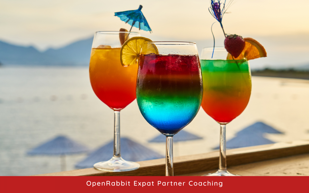 Giving up your job to become an expat partner – how will that impact you?