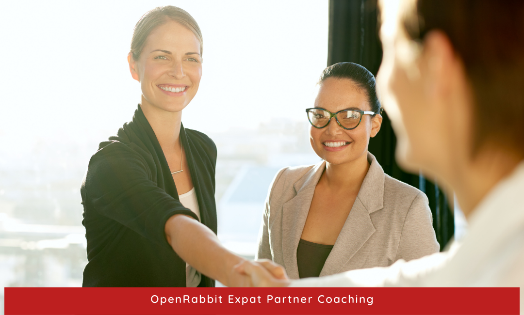 Five requirements for finding employment as an expat partner